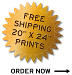Free Shipping on 20x24 Prints!
